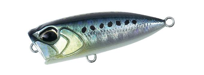 Sardine Poco