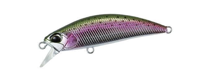 MCC4036 Rainbow Trout 50S